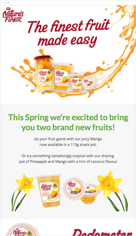Email Marketing - Natures Finest Fruits Email Newsletter